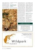 Achtung Wildkatze! - Vorarlberger Jägerschaft - Page 3