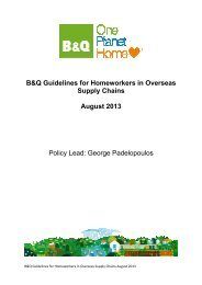 B&Q Guidelines for Homeworkers in Overseas Supply Chains ...