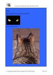 Tiger: Mein BLOG für Januar bis Juni 2010