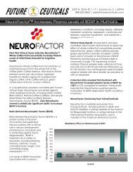 NeuroFactor™ Increases Plasma Levels of BDNF in Humans