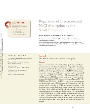 Regulation of Electroneutral NaCl Absorption by the Small Intestine