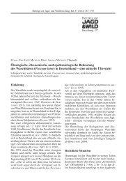 PDF-Download - Projekt Waschbär