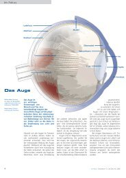Das Auge - Carl Zeiss