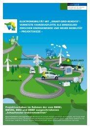 """ElEktromobilität mit """"Smart-Grid-rEnditE"""": VErnEtztE ... - Simone Peter"""