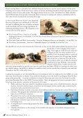 February 2013 - Illawarra Birders - Page 6