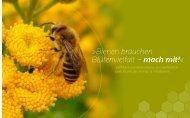 Bienen brauchen Blütenvielfalt – mach mit! - Niedersächsischen ...