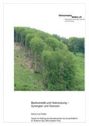 Biodiversität und Holznutzung – Synergien und Grenzen - BAFU
