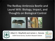 The Redbay Ambrosia Beetle and Laurel Wilt - Biocontrol for Nature ...