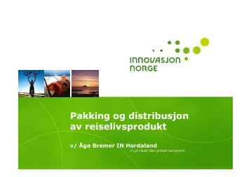 Åge Bremer, Innovasjon Norge