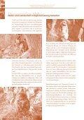 Rohstoffnutzung in Rheinland-Pfalz - Vero - Seite 6