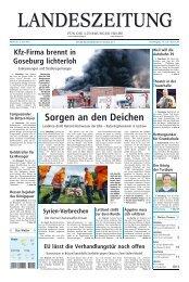 Sorgen an den Deichen - Artlenburg