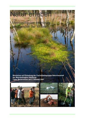 Dokumentation Teil 1 als PDF herunterladen - Metropolregion ...