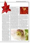 Spring 2013 - Botanic Garden - University of Oxford - Page 3