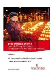 Handbuch 2013 - Caritas international