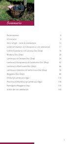 Terre di Lambrusco_2013_WEB.pdf - Page 3