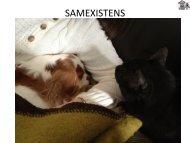 Föreläsning Anneli Svensson - Ungdomsstyrelsen