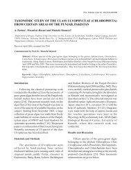 Taxonomic Study.pmd - Pakistan Academy of Sciences