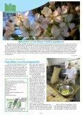 Wie früher – Heiligabend gibt's Kartoffelsalat mit Würstchen - Seite 2
