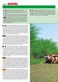 MOD. MAESTRA - almex - Page 2