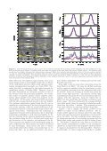 ANOMALOUS CIRCULAR POLARIZATION PROFILES IN THE HE I ... - Page 2