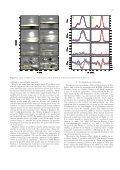 ANOMALOUS CIRCULAR POLARIZATION PROFILES IN THE HE I ... - Page 3