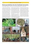 SUBSTANZ Report - Seite 2