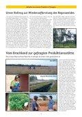 SUBSTANZ Report - Seite 3