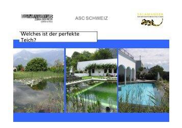 Grundkategorien von Schwimmteich 2012 - Salamander