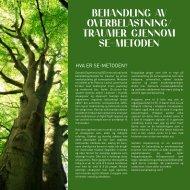 behandling av overbelastning/ traumer gjennom se-metoden