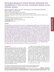 Plasmodium falciparum Genetic Diversity Maintained and Amplified ...