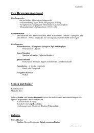 Der Bewegungsapparat (pdf)