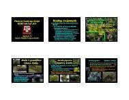 Plant List 11 - Aggie Horticulture - Texas A&M University