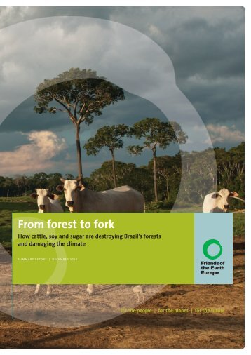 From Forest to Fork - Friends of the Earth Europe