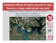 Potential effects of zebra mussels in Lake Texoma, a large ...