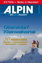 Download - Chalet Alpin