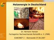 Holzenergie-D-Eberswalde070607.pdf