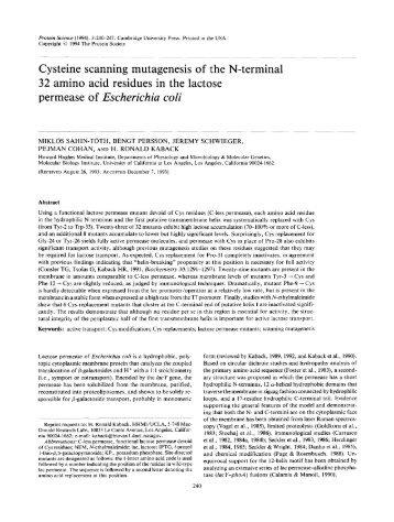 permease of Escherichia coli