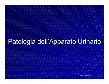 Patologia dell'Apparato Urinario