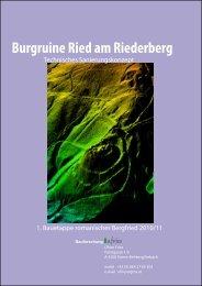 Sanierungskonzept Bergfried 2010 - Burgruine Ried