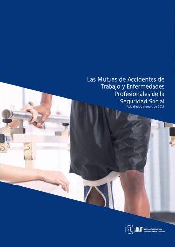 Las Mutuas de Accidentes de Trabajo y Enfermedades ... - Amat