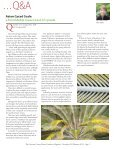Bulb Gardening - Aggie Horticulture - Texas A&M University - Page 5