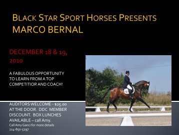Marco Bernal International Dressage - Black Star Sport Horses