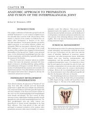 anatomic approach to preparation and fusion of the interphalangeal ...