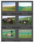 2007 Photo report Takhin Tal, transport Hustai Nuuru - Page 3