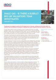SHALE GAS – IS THERE A BUBBLE? BDO UK ... - UK.COM