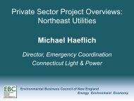 Private Sector Project Overviews - Environmental Business Council ...