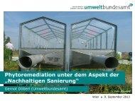 """Phytoremediation unter dem Aspekt der """"Nachhaltigen Sanierung"""""""