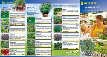 Kiepenkerl Profi-Line Pflanzen Hexenkräuter - Volmary