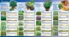 Kiepenkerl Profi-Line Pflanzen Hexenkräuter - Volmary - Page 2