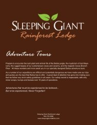 Adventure Tours - Belize Jungle Lodge - Sleeping Giant Rainforest ...